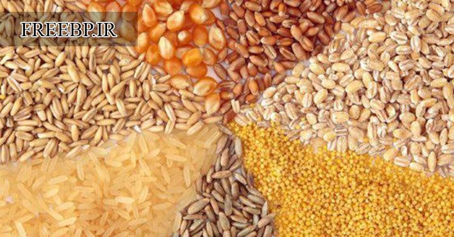 طرح توجیهی تولید خوراک دام و طیور